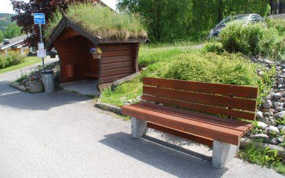 Årsmøte Bagn Vel